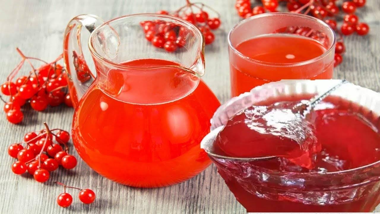 Рябиновый чай — витамины для вашего здоровья
