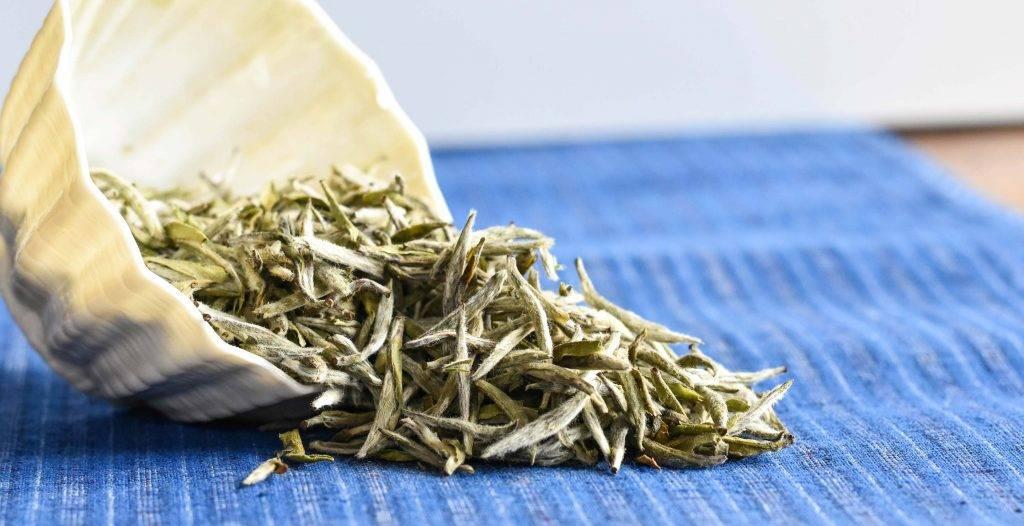 Желтый китайский чай (хуан ча): польза и вред, как заваривать, как выглядит