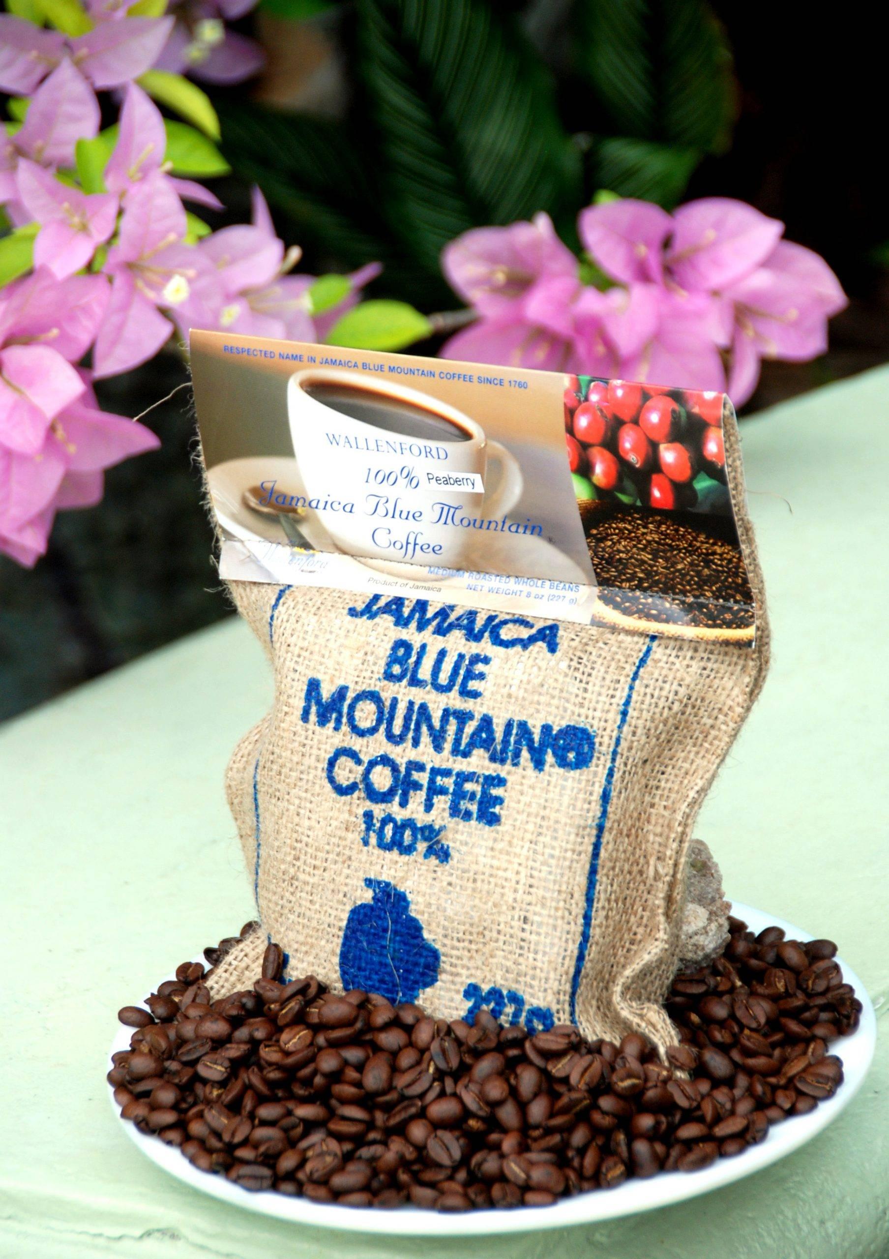 Сорта кофе на ямайке - описание, цена, отзывы