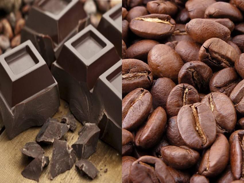 Мокко кофе — что это такое