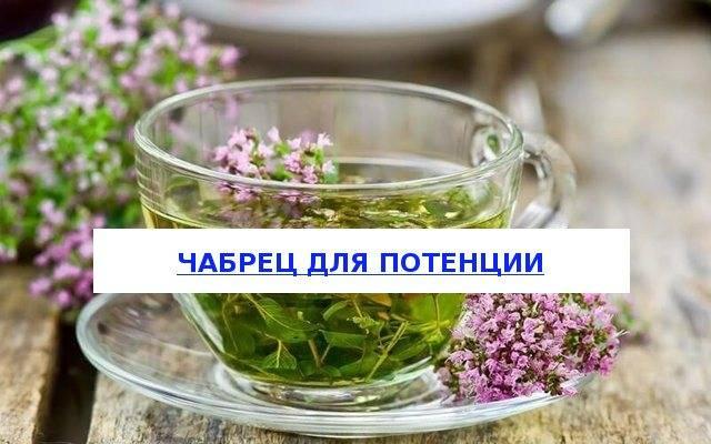 Польза и вред черного чая с чабрецом