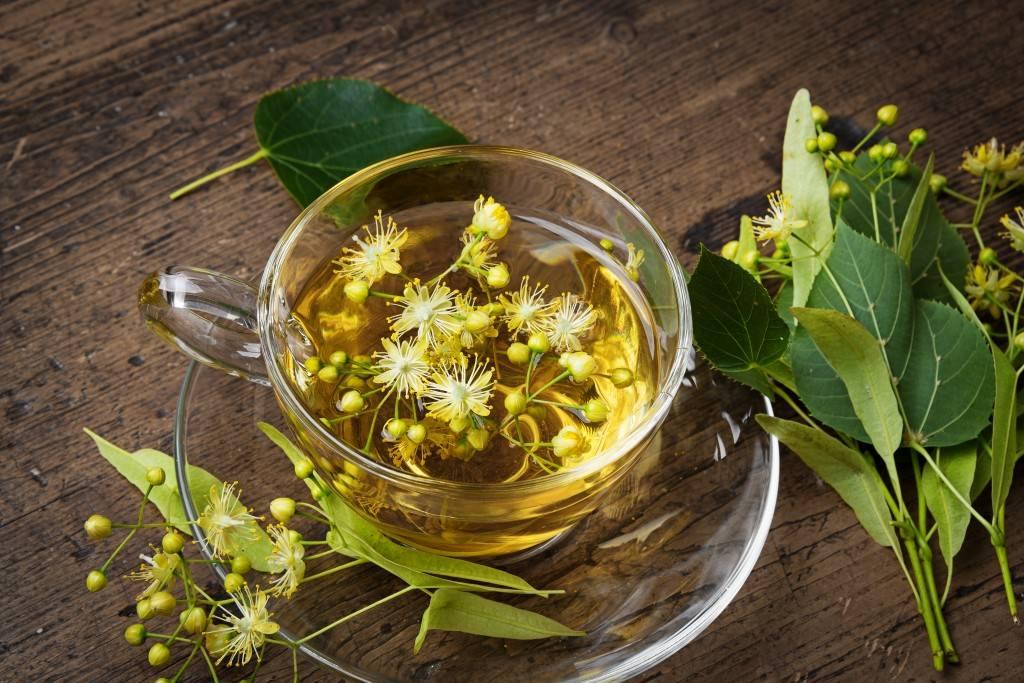 Как заваривать чай с чабрецом, секреты приготовления и рецепты
