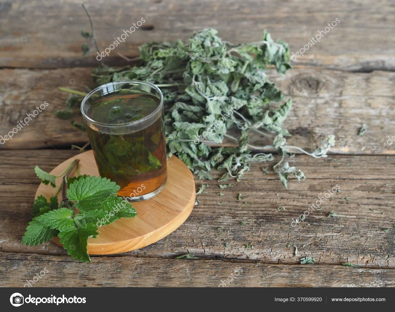 Лимонно мятная настойка на самогоне. рецепт приготовления настойки на мяте на водке (спирту, самогоне)