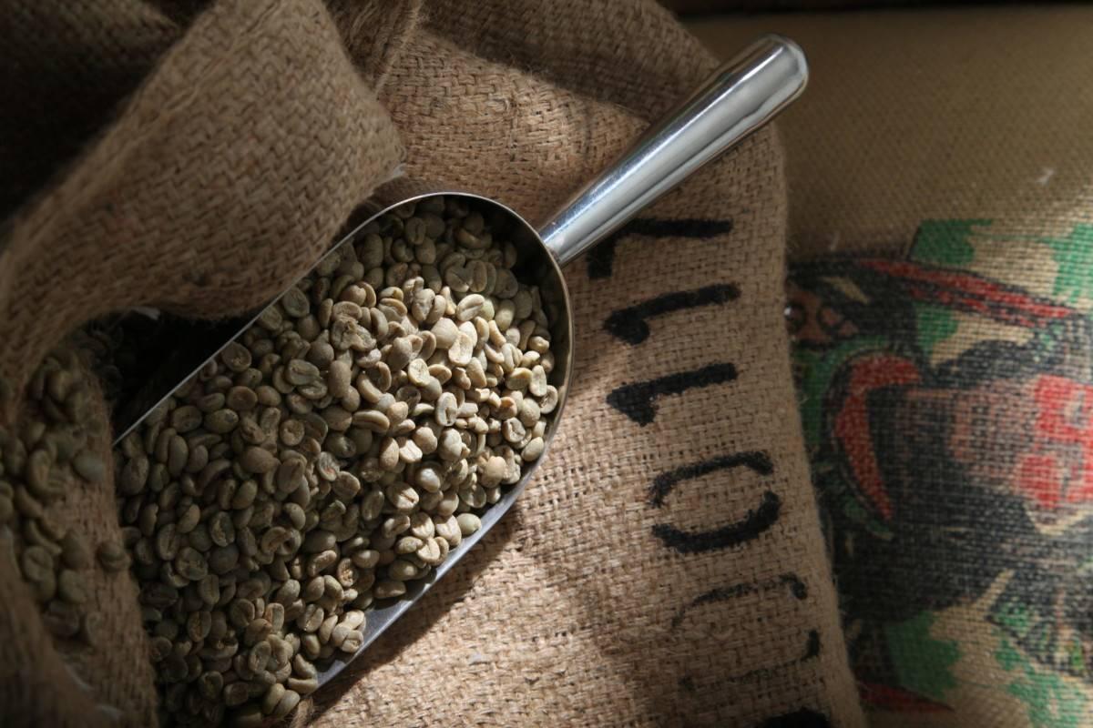 Гид по обжарке кофе: понятие, технология, степени обжарки