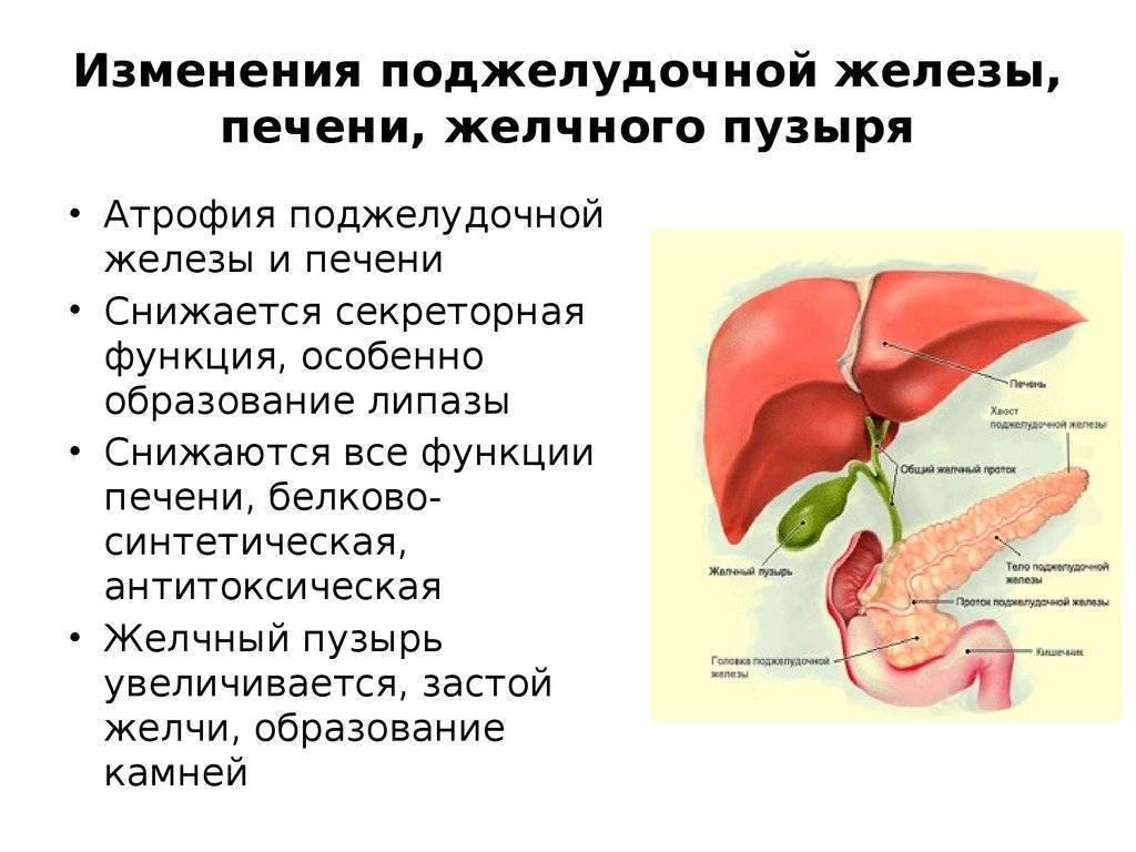 Диета при холецистите. меню питания при лечении острого и хронического холецистита - medside.ru