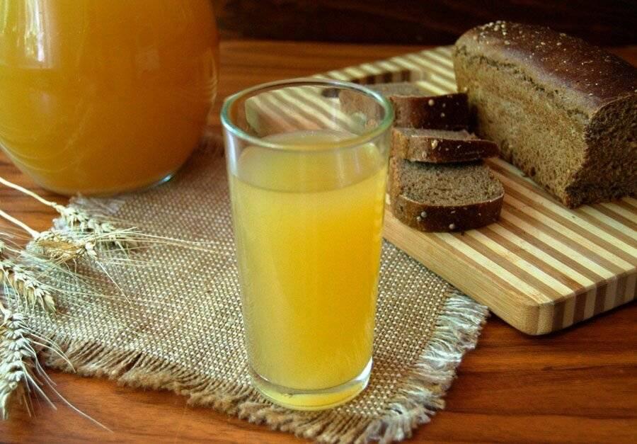 Ржаной квас в домашних условиях из солода, муки и хлеба