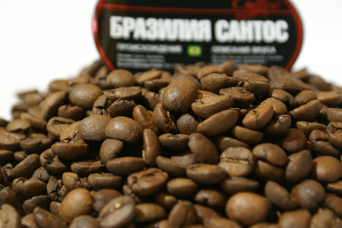 Как выбрать кофе правильно - как найти самый лучший и натуральный сорт