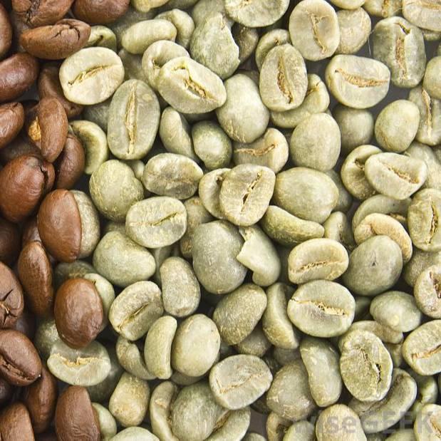 Кофейное дерево - особенности строения. плоды кофе и их структура.