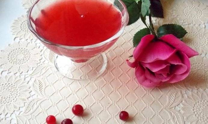 Как приготовить кисель изклюквы, советы ирецепты вкусного напитка идесерта