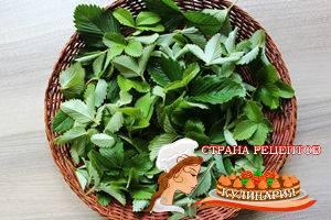 Чай из листьев земляники: польза и вред, рецепты, заготовка