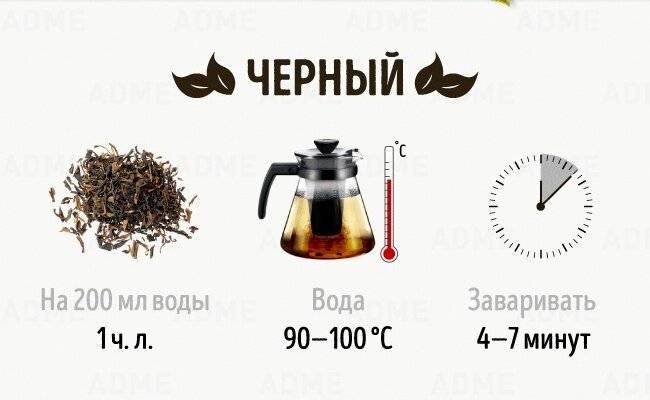 Правила для заваривания черного чая и важные нюансы приготовления напитка