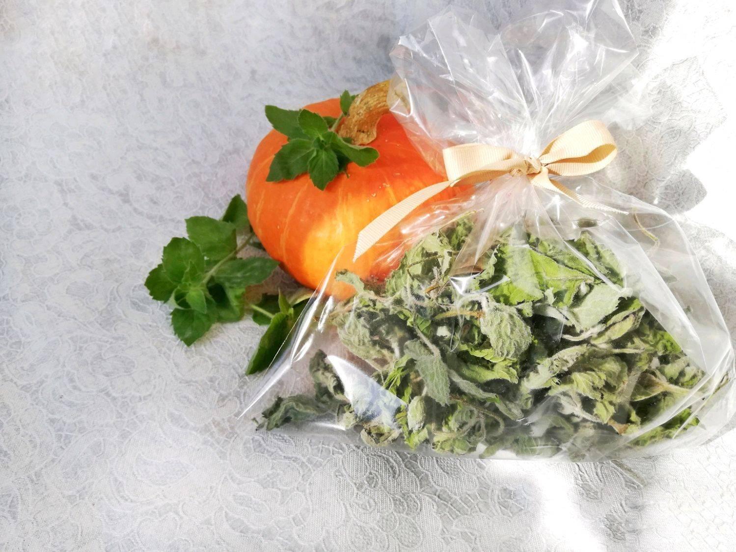 Когда собирать мяту для сушки на зиму: сроки сбора, как хранить