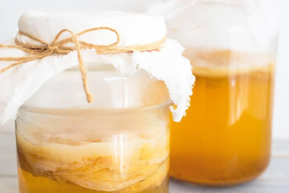 Польза и вред медузомицета: как вырастить чайный гриб и правильно принимать напиток