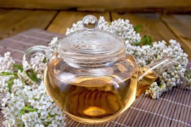 Акация белая: полезные свойства и противопоказания, лечебные свойства меда