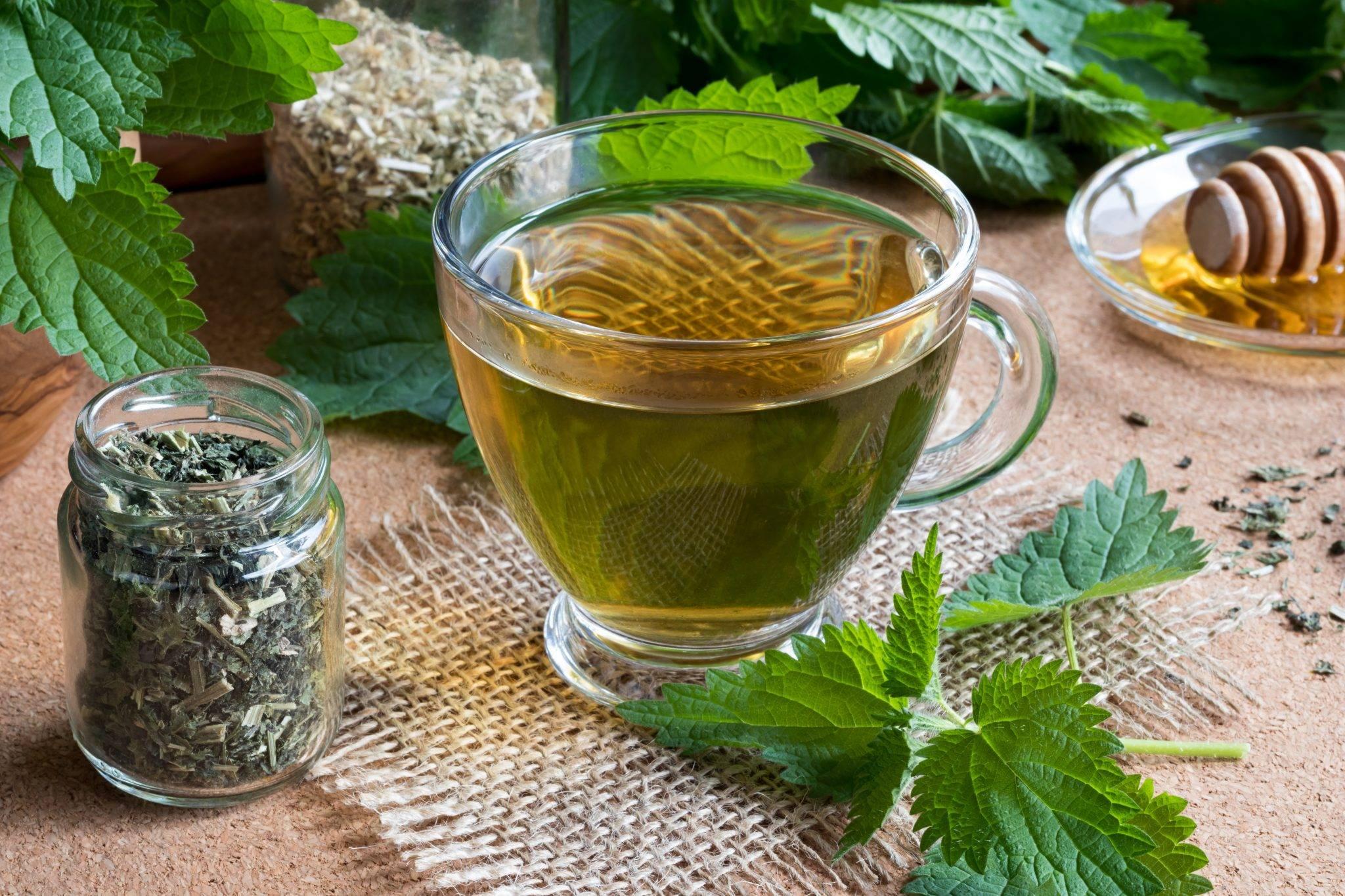 Как заварить целебный чай с крапивой