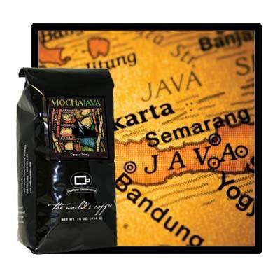 Кофе робуста: особенности вида и отличия от арабики