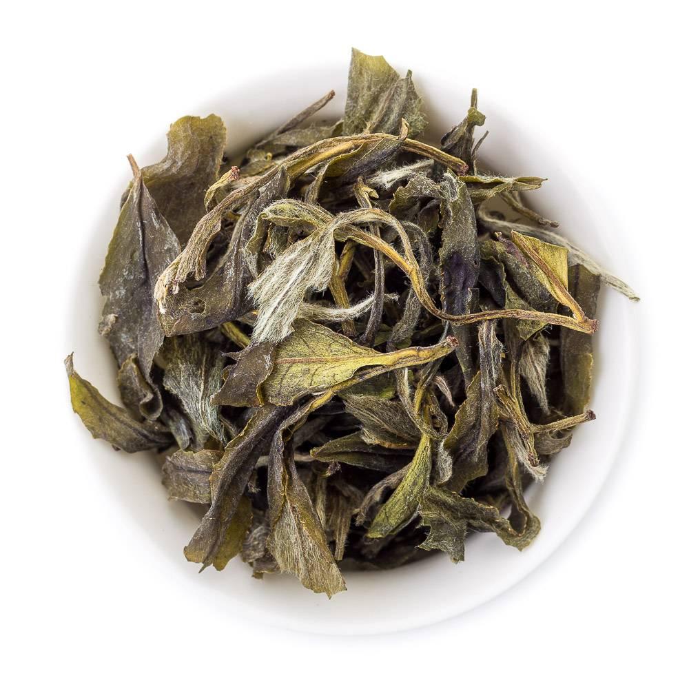 Чай белый пион: вкусовые свойства и традиции приготовления