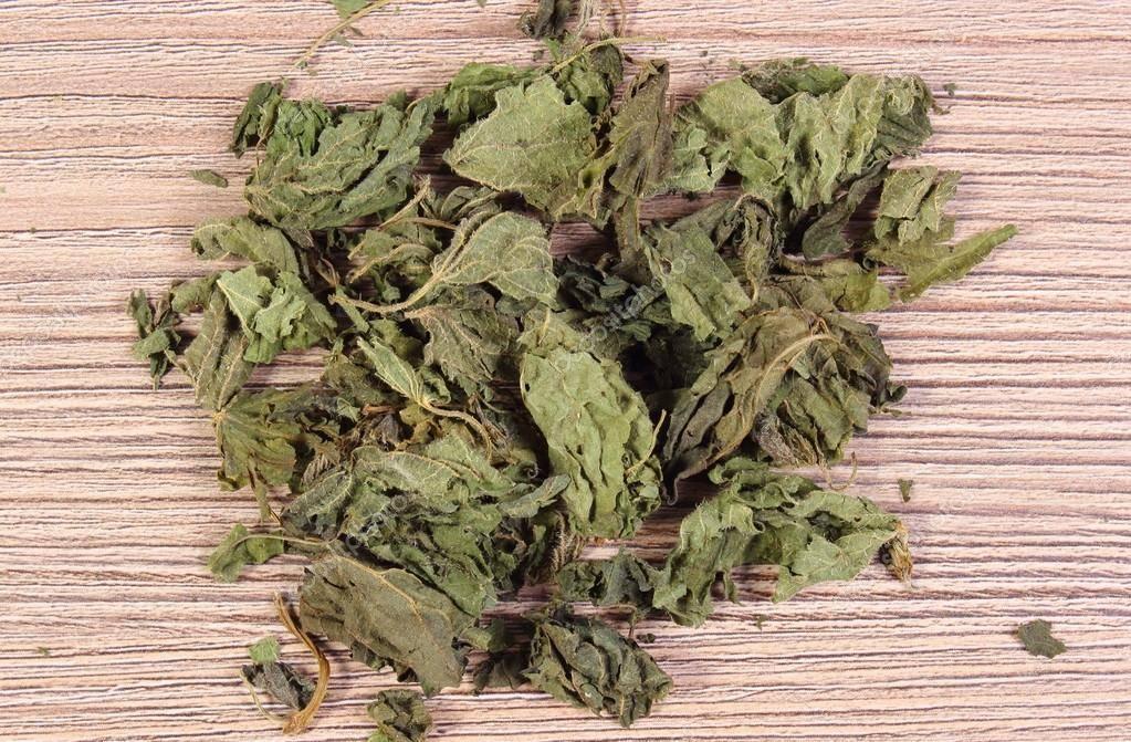 Крапива: лечебные свойства и противопоказания листьев, семян, корней