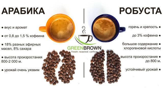 Где больше кофеина: в кофе, чае или какао