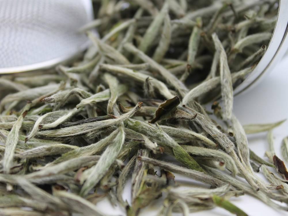 Чай бай хао инь чжень : заваривание, польза и вред, отзывы