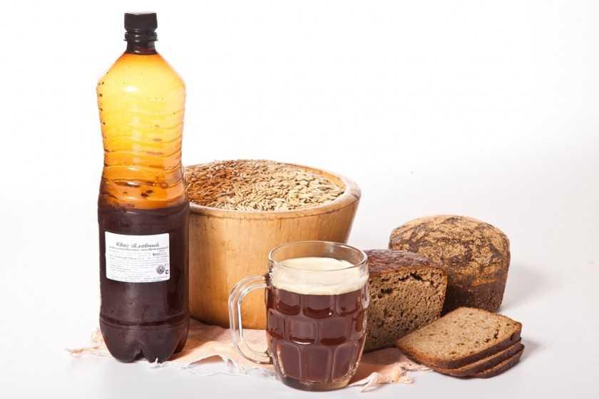 Хвойный квас чудо - бальзам для здоровья и долголетия. | здоровое питание