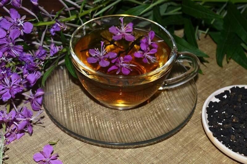 Копорский чай полезные свойства, противопоказания, рецепт приготовления