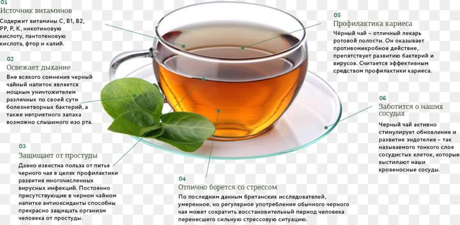 Зеленый чай при беременности: можно ли пить на ранних и поздних сроках и когда стоит заменить горячим чаем каркаде, пуэр или с бергамотом? противопоказания и особенности приема
