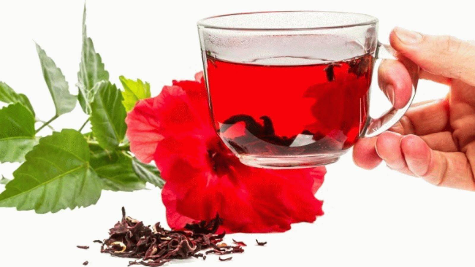 Чай каркаде— помощьвнормализации давления и улучшении работы сосудов