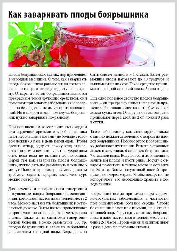 Чай из боярышника: польза и вред, рецепты