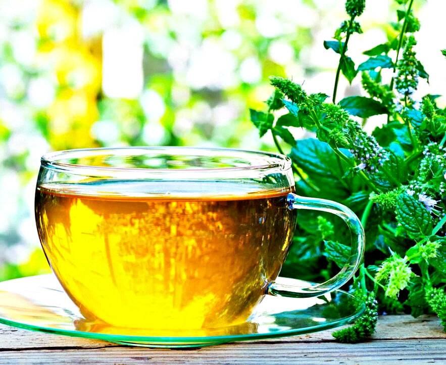 Успокоительный чай для детей: какой выбрать?