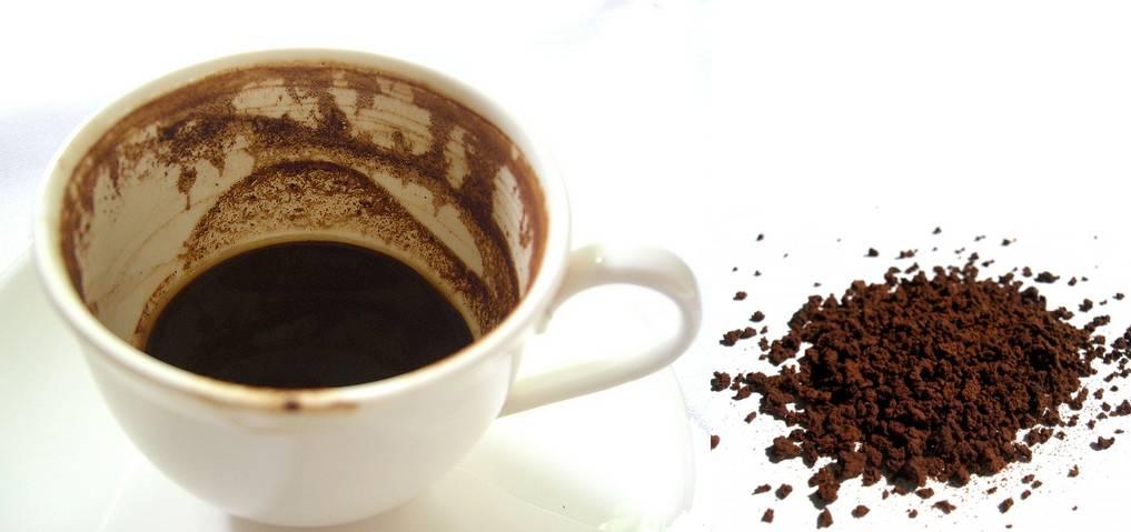 Можно ли жевать кофейные зерна: вред или польза