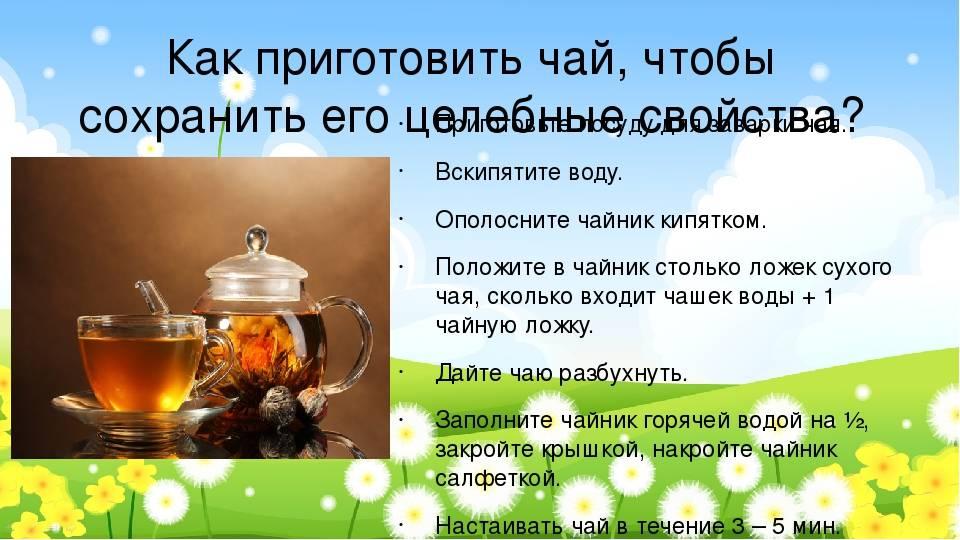 Чудесные свойства травяных чаев: 12 рецептов на все случаи жизни