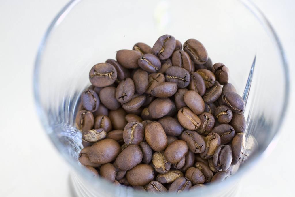 Попробовал копи лювак: кофе из экскрементов животного. какой на вкус, сколько стоит, и кто до этого додумался