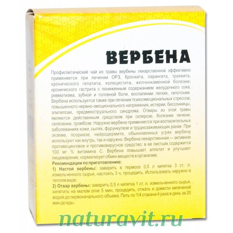 Вербена: полезные свойства, противопоказания, польза и вред