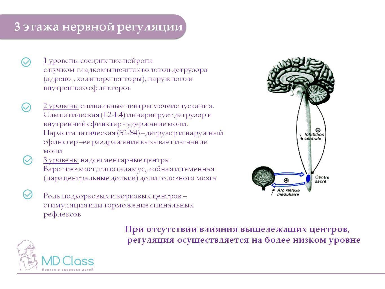 Нервозность и раздражительность - причины, симптомы, лечение