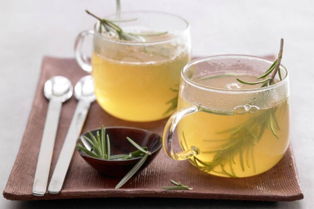 Чай с розмарином: полезные свойства, рецепты