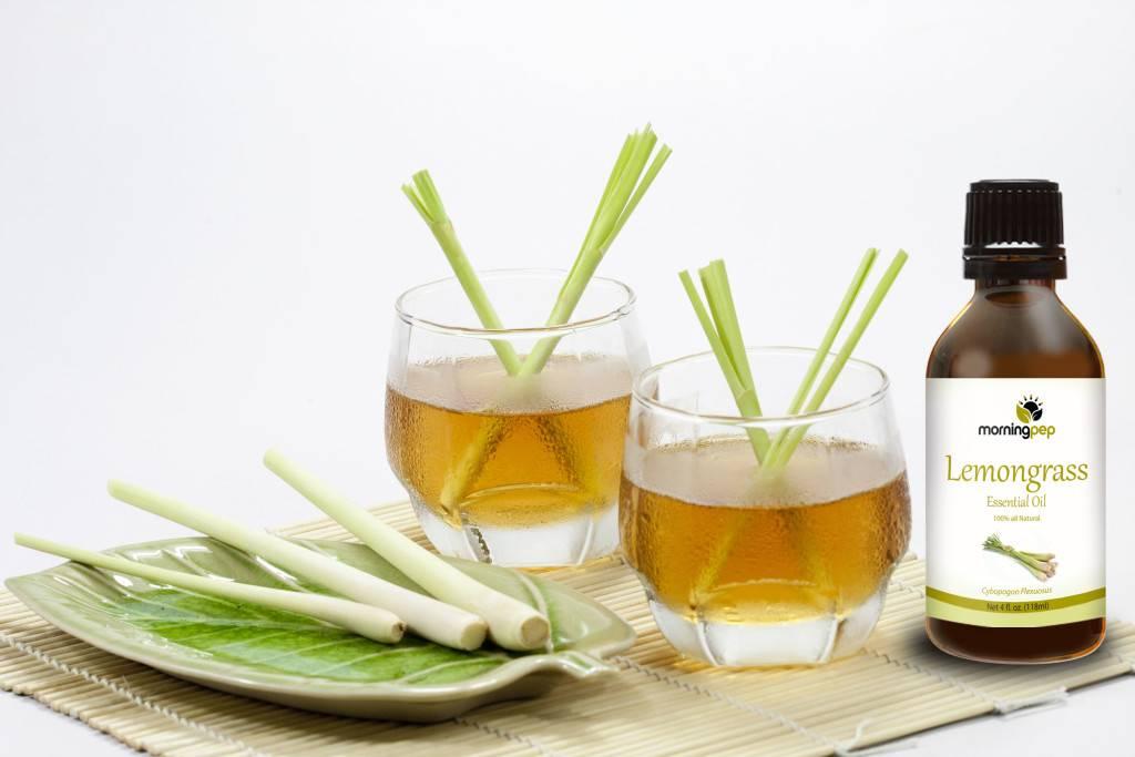 Чудесный лемонграсс – что это такое и как его правильно применять в кулинарии?