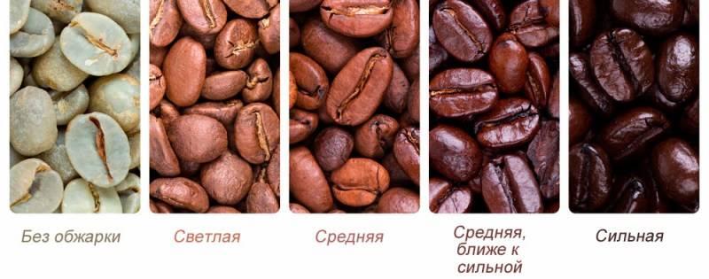 Виды кофе и напитков на его основе. виды кофейных зерен, обжарки и степени помола