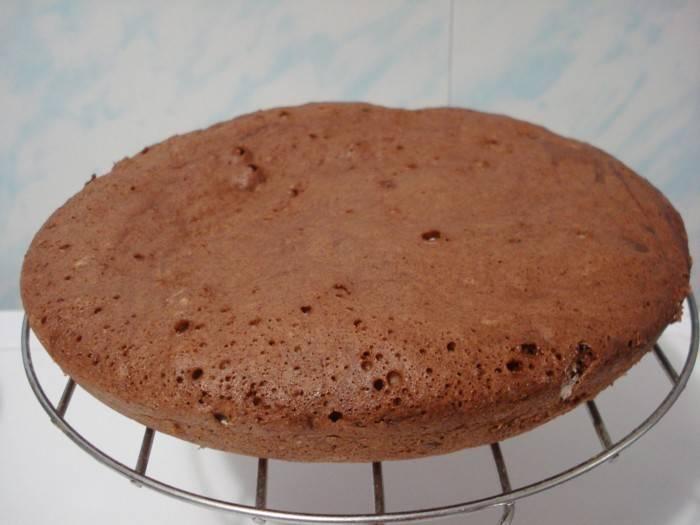 Бисквит в мультиварке - как приготовить по простым рецептам с фото и сколько выпекать