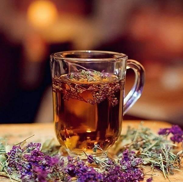 Чай с душицей: мягкий вкус, несомненная польза для организма