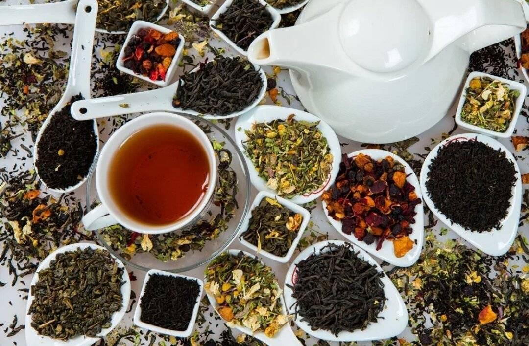 Чем полезен бодрящий чай, приготовление и разнообразие его видов