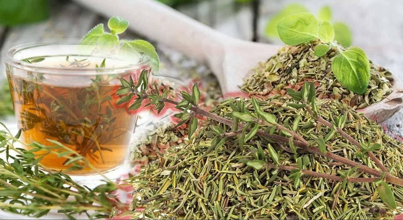 Польза и вред чая с фенхеля