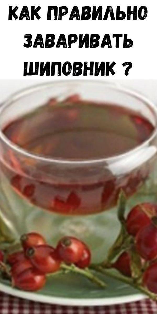 Все способы правильной заварки чая с сушеного шиповника