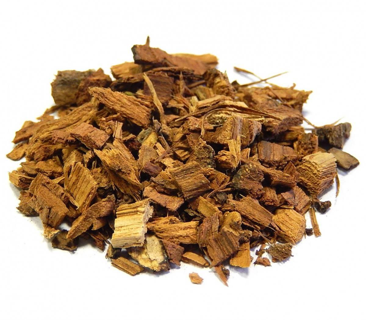 Кора дуба — свойства и применение в народной медицине