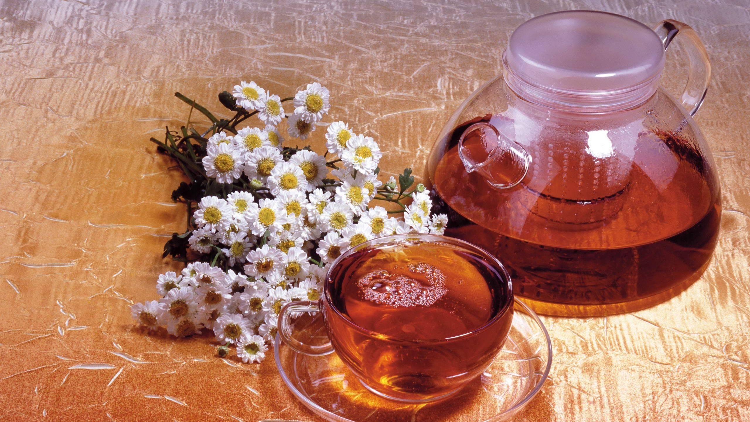 Иван-чай: сокровище предков для беременных и не только