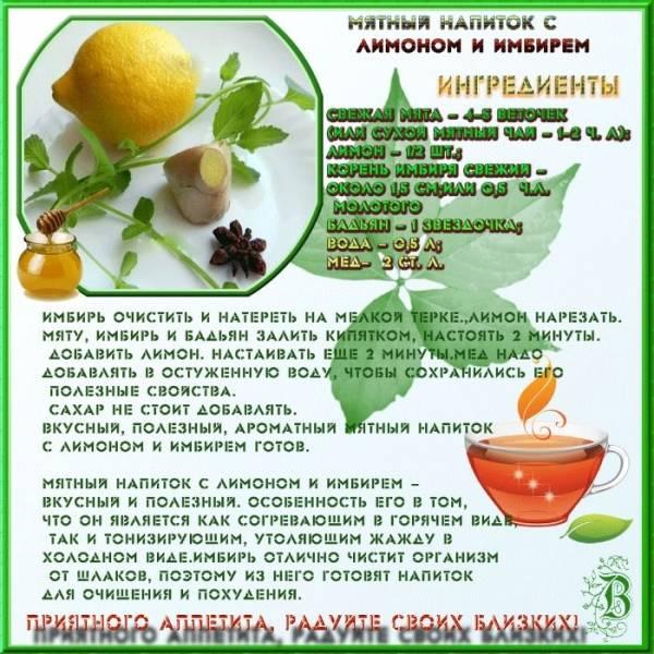 ✅ чай от простуды: какой пить, рецепты заваривания в домашних условиях - алекус.рф