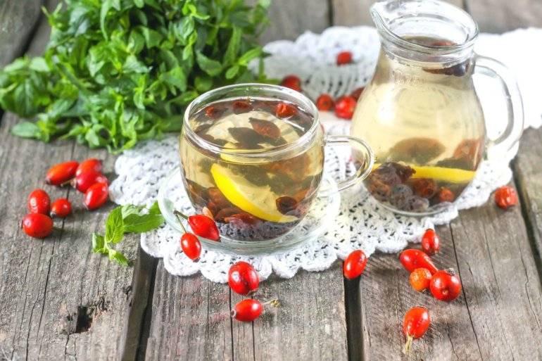 Брусника при беременности : полезные свойства и рецепты | компетентно о здоровье на ilive