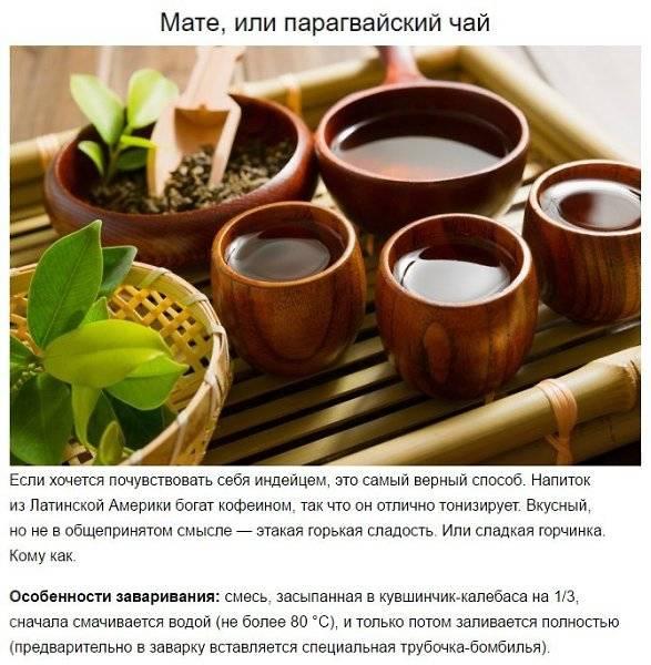 Топ 10 лучших марок черного чая в пакетиках: рейтинг, страна происхождения, какой купить, цена, отзывы