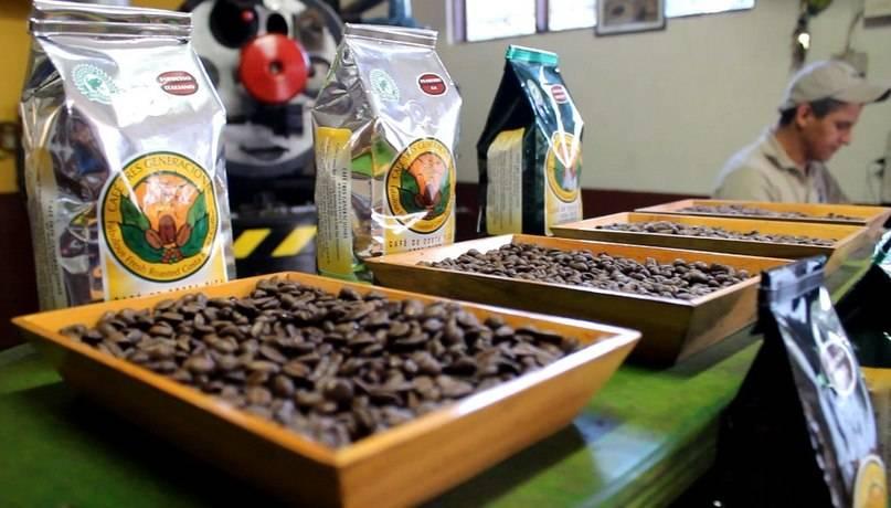 Характеристика кофе из Гвианы (Суринам, Гайана, Французская Гвиана)