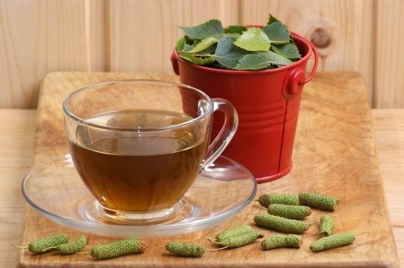 Кора и листья вяза: лечебные свойства и противопоказания, порошок, чай, настой, отвар, настойка, мазь | народная медицина